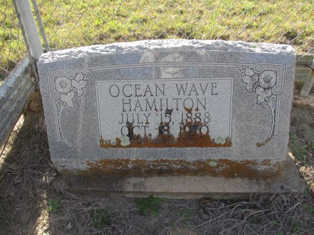 ocean wave hamilton