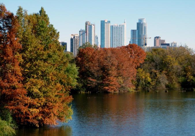 Town Lake to Downtown - Nov 14