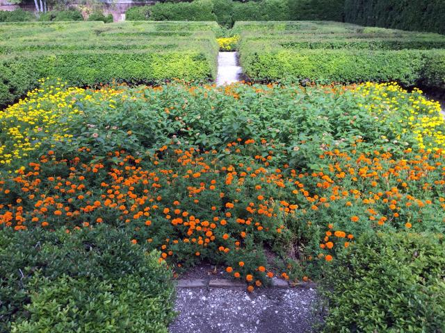 Williamsburg Governor's Palace Gardens1 - August 2015
