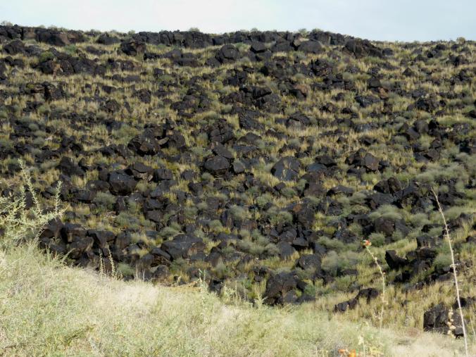 Lava Field - Petroglyph National Monument - Albuquerque NM - October 2015