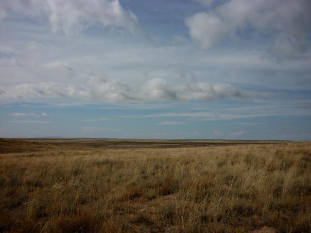 New Mexico Vista - Albuquerque NM - October 2015