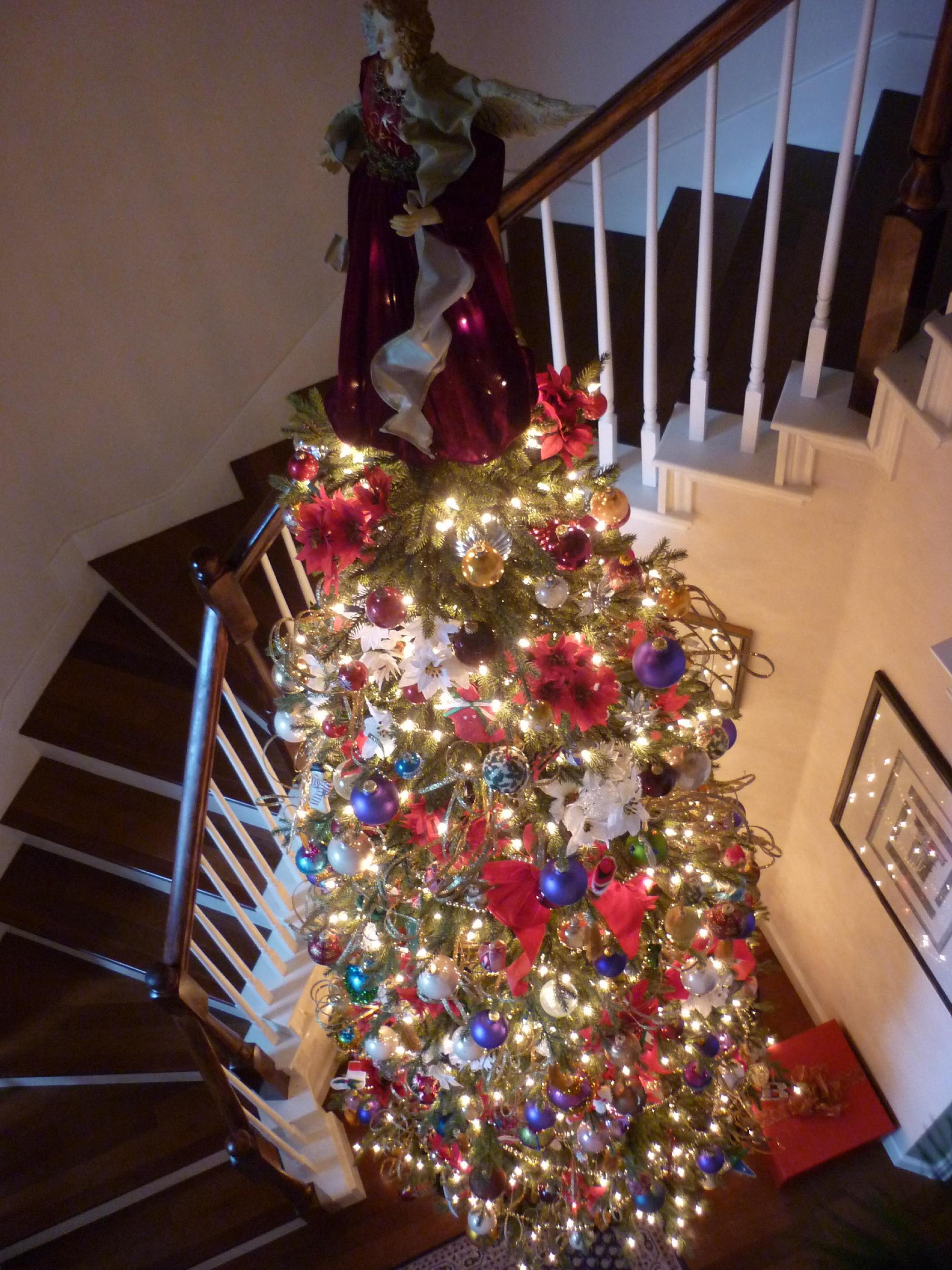 christmas trees east end long island