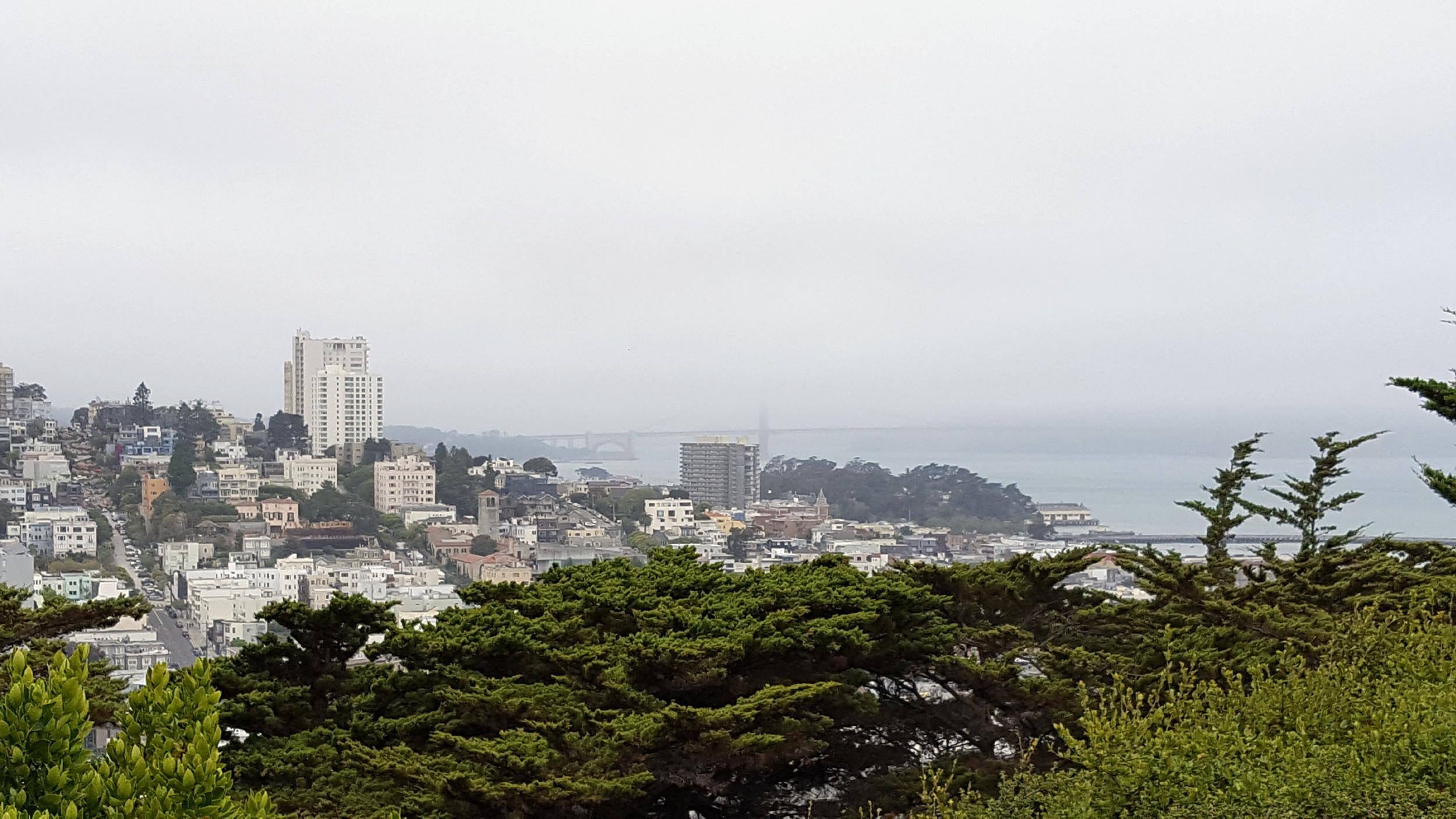 SF - Coit Tower View