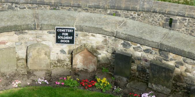 edinburgh-castle-dogs-cemetery