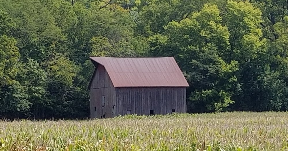 Barn - Pike County Illinois
