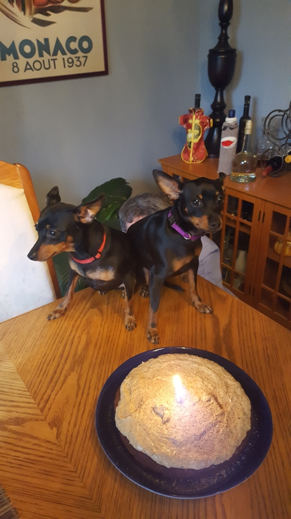 Fannie and Mabel's First Birthday (10)